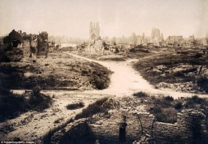 Flanders 1919.jpg